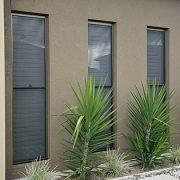 3 double hung windows of a house with plants in backyard