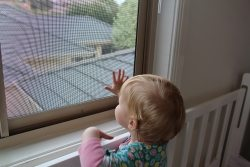 Small child touching the safety screen of an aluminium window